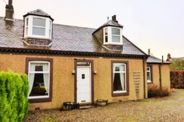 Thumbnail Semi-detached house to rent in James Street, Stanley, Perth