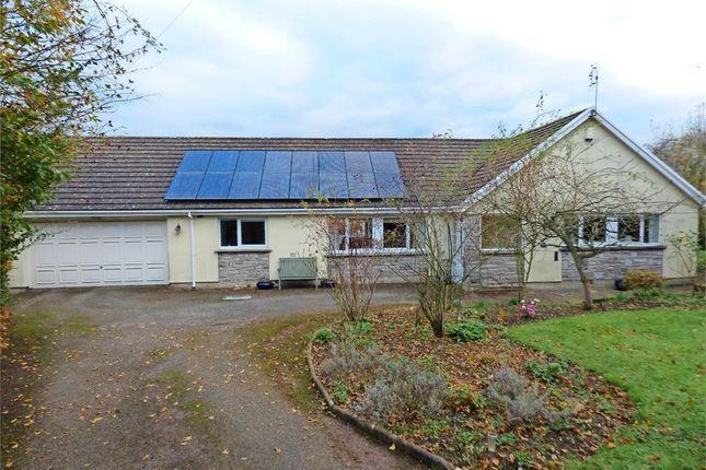 Thumbnail Detached bungalow for sale in Morland, Penrith, Cumbria