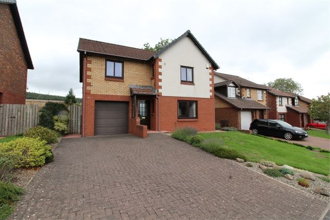Thumbnail Detached house for sale in Cypress Way, Penrith, Cumbria