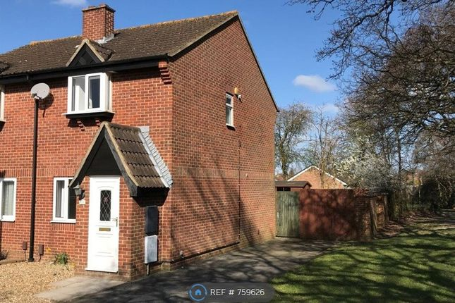 Thumbnail Semi-detached house to rent in The Pastures, Fareham