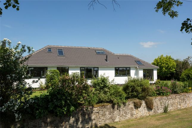 Thumbnail Property for sale in Rainton, Thirsk, North Yorkshire