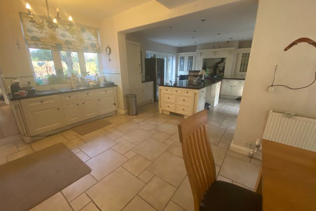 Thumbnail Detached house for sale in The Oval, Oadby