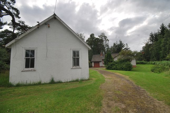 Thumbnail Detached house for sale in Dall Rannoch, Loch Rannoch
