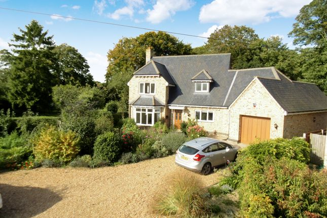 Thumbnail Detached house for sale in Manor Gardens, Potton