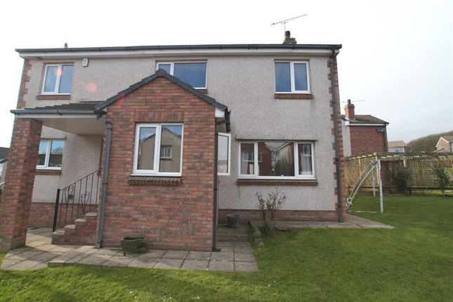 Thumbnail Property to rent in Elbra Farm Close, Ellenborough, Maryport