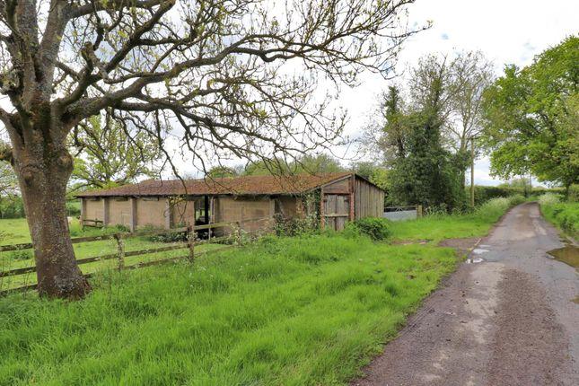 Thumbnail Farm for sale in Appledore, Ashford