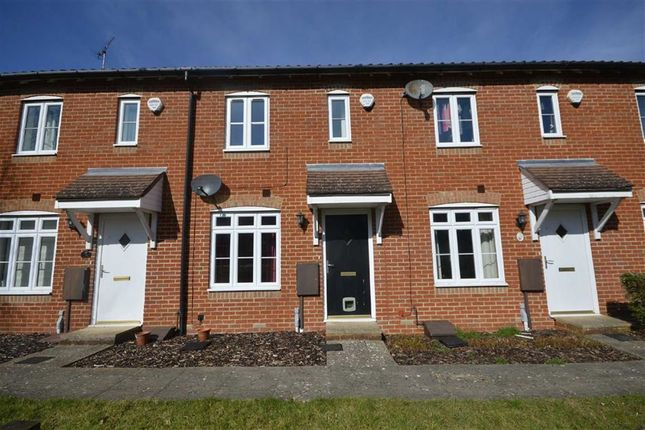 Thumbnail Terraced house to rent in Imperial Way, Ashford, Kent