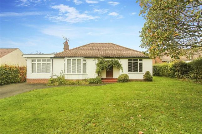 Thumbnail Bungalow to rent in Edge Hill, Ponteland, Newcastle Upon Tyne
