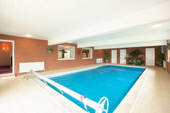 Thumbnail Bungalow for sale in New Dover Road, Capel-Le-Ferne
