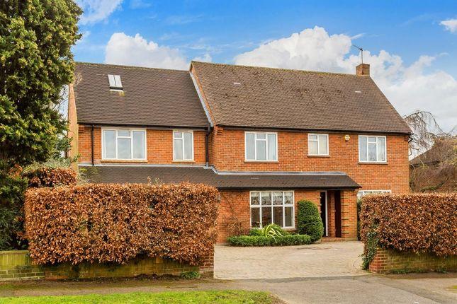Thumbnail Detached house for sale in Warren Avenue, South Cheam, Sutton