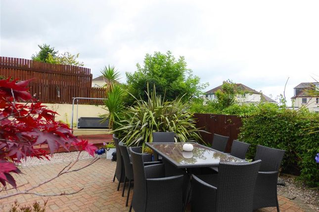 Thumbnail Property to rent in Barnfield Road, Paignton