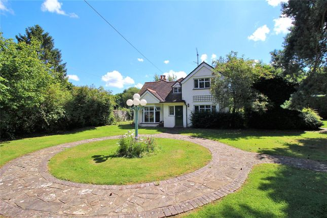 Thumbnail Equestrian property for sale in Hare Lane, Lingfield