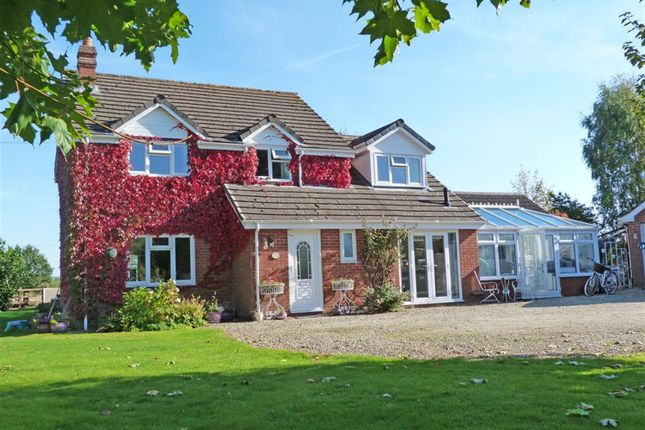 Thumbnail Detached house for sale in Shelwick, Hereford