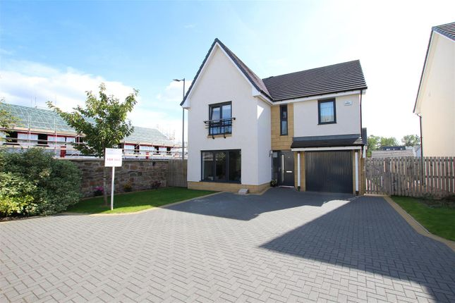Thumbnail Detached house for sale in Candytoft Wynd, Ferniegair, Hamilton