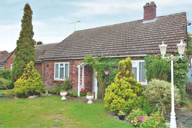 Thumbnail Detached bungalow for sale in School Road, Langham, Colchester, Essex
