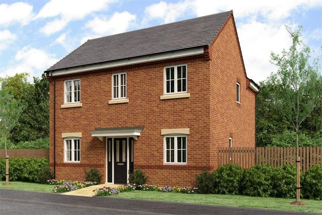 "Thumbnail Detached house for sale in ""The Wells"" at Buttercup Gardens, Blyth"