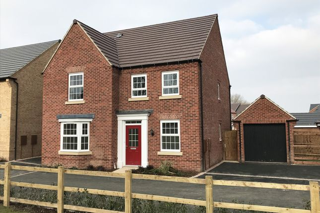"Thumbnail Detached house for sale in ""Holden"" at The Long Shoot, Nuneaton"