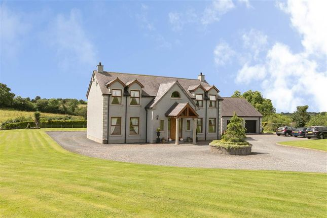 Thumbnail Detached house for sale in 116, Backnamullagh Road, Dromore