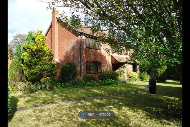 Thumbnail Room to rent in Wensum Valley Close Ne, Norwich
