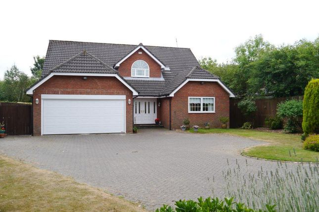 Thumbnail Detached house for sale in Wentworth Court, Ponteland, Newcastle Upon Tyne