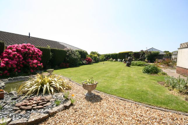 Thumbnail Detached bungalow for sale in Lytchett Matravers, Poole, Dorset