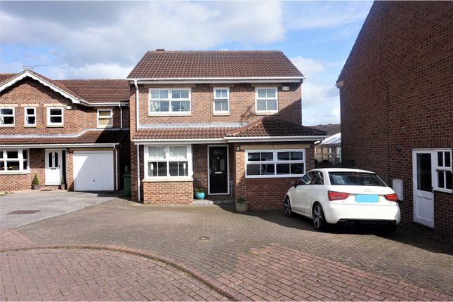 Thumbnail Detached house to rent in Sorrel Close, Beverley