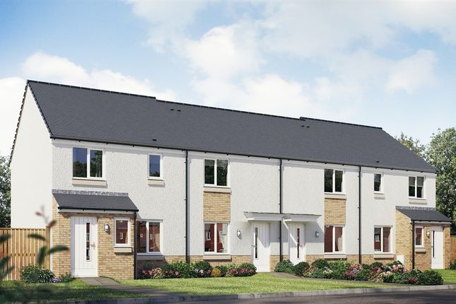 """Thumbnail Terraced house for sale in """"The Portree"""" at Vellore Road, Maddiston, Falkirk"""