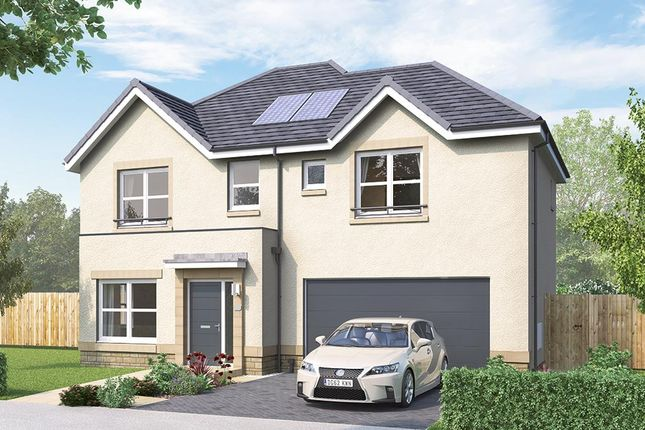 """Thumbnail Detached house for sale in """"The Westbury"""" at Mauricewood Road, Penicuik"""