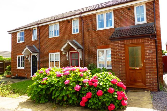 Thumbnail Property to rent in Tamar Close, Stevenage