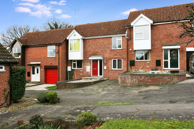 Thumbnail Property to rent in Fernlea, Colchester