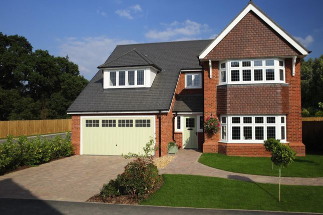 Thumbnail Detached house for sale in Lime Tree Meadows, Ellesmere Road, Shrewsbury, Shropshire