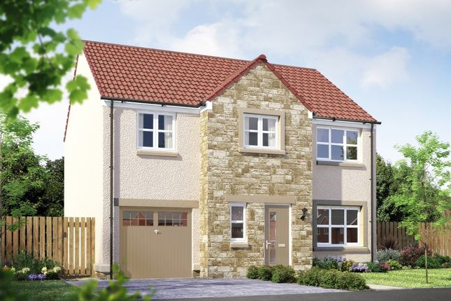 "Thumbnail Detached house for sale in ""The Carradale"" at East Calder, Livingston"