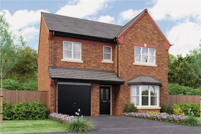"""Thumbnail Detached house for sale in """"Glenmuir"""" at Rykneld Road, Littleover, Derby"""