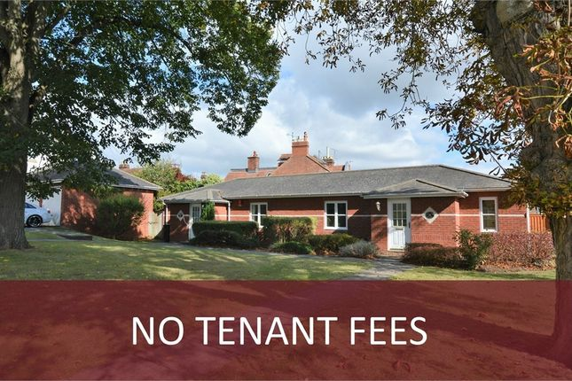 Thumbnail Semi-detached bungalow to rent in Horseguards, Exeter, Devon