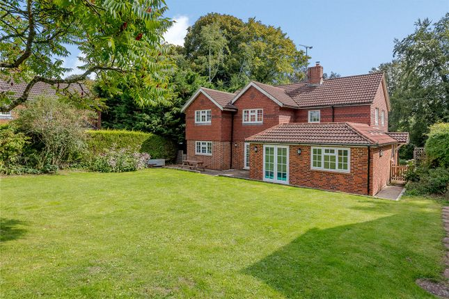 Thumbnail Detached house for sale in Blounce, South Warnborough, Hook, Hampshire