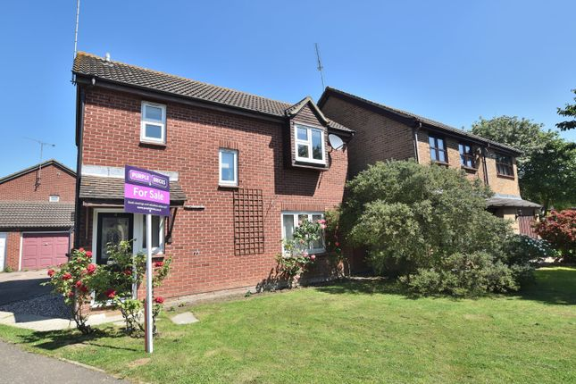 Thumbnail Detached house for sale in Bounderby Grove, Newland Spring, Chelmsford