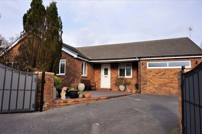 Thumbnail Detached bungalow for sale in Foxes Cross, Hen Heol Y Banc, Pontyberem, Llanelli