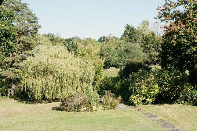 Photo 10 of Pine Walk, East Horsley, Leatherhead KT24
