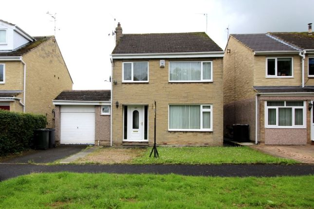 Thumbnail Detached house to rent in Springfield, Ovington, Prudhoe