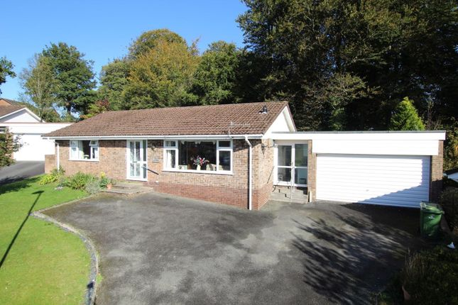 Thumbnail Detached bungalow for sale in Beech Grove, Brecon