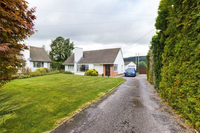 Thumbnail Bungalow for sale in Common Road, Gilwern, Abergavenny