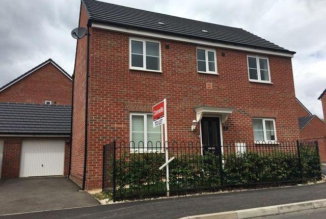Thumbnail Property to rent in Tilman Drive, Peterborough