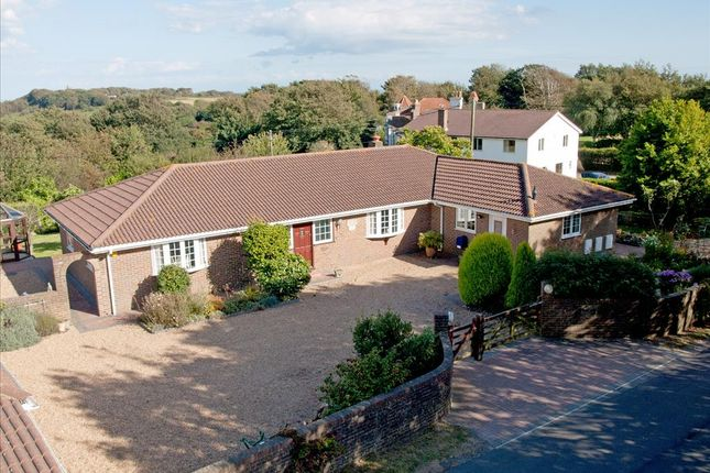 Thumbnail Detached bungalow for sale in Martineau Lane, Hastings