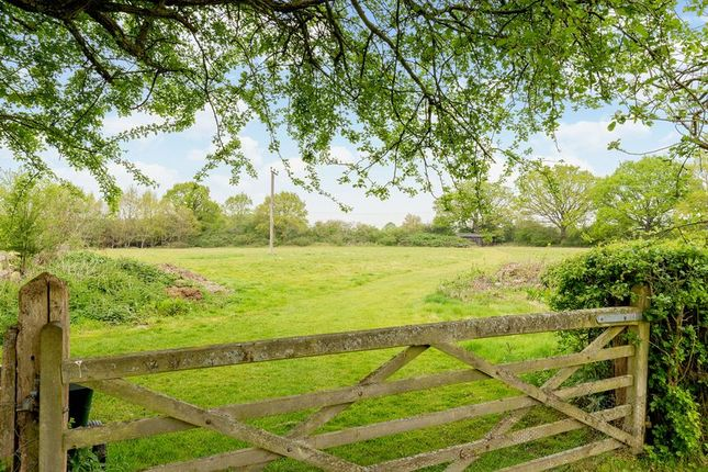Photo 17 of Garmans, Newpound Lane, Wisborough Green, Billingshurst RH14