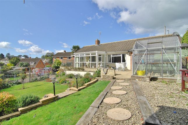Thumbnail Bungalow for sale in Birches Drive, Stroud