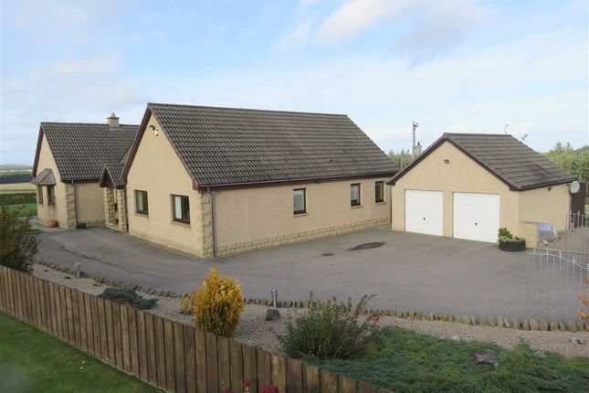 Thumbnail Detached bungalow for sale in Birnie, Elgin