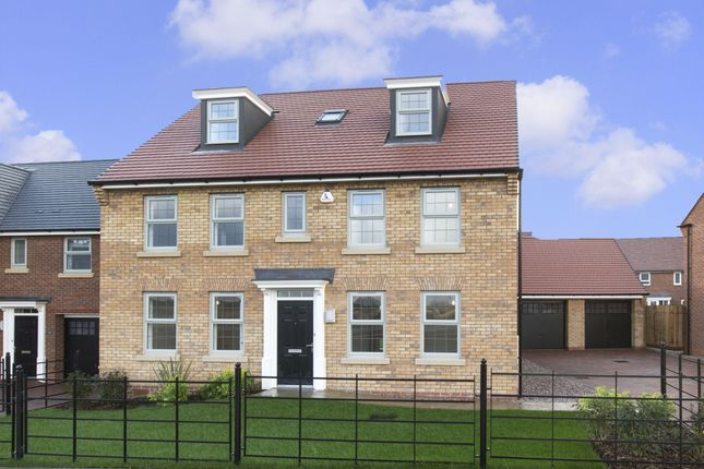 """Thumbnail Detached house for sale in """"Buckingham"""" at Tamora Close, Heathcote, Warwick"""