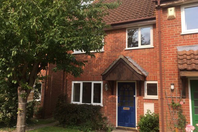 Thumbnail Semi-detached house to rent in Marwood Close, Wymondham