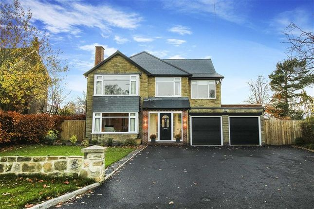Thumbnail Detached house for sale in King Johns Court, Ponteland, Northumberland
