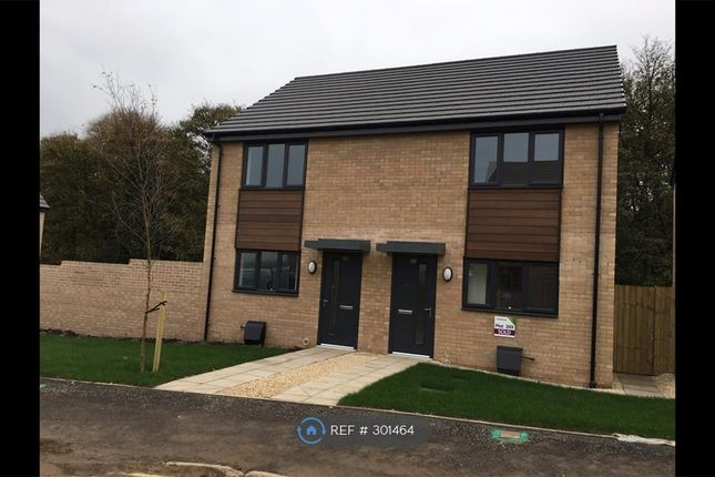 Thumbnail Semi-detached house to rent in Roberts Road, Doncaster